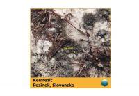 Fotomagnet - Kermezit - Pezinok -  75 x 75 mm